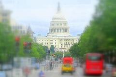 duesipics_washington